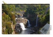 Ausable Falls Carry-all Pouch
