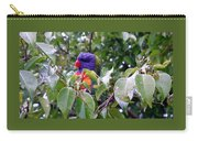 Australia - One Wet Lorikeets Carry-all Pouch