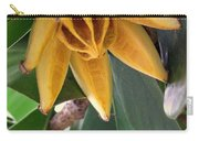 Autograph Tree Seed Pod Carry-all Pouch