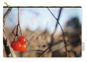 Automn Fruits Carry-all Pouch
