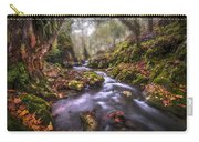 Autum In The Sierra Negra Highlands Carry-all Pouch
