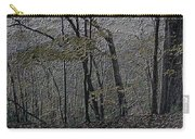 Autumn 2015 Panorama In The Woods Pa 01 Carry-all Pouch