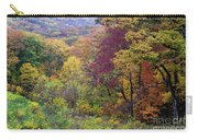 Autumn Arrives In Brown County - D010020 Carry-all Pouch