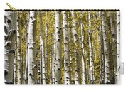 Autumn Aspens Carry-all Pouch by Adam Romanowicz