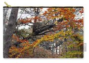 Autumn At Beech Forest Carry-all Pouch
