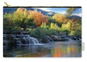 212m47-autumn At Cascade Springs  Carry-all Pouch