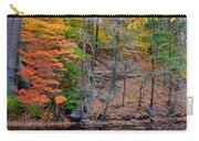 Autumn At Echo Bridge Carry-all Pouch