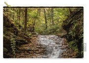 Autumn At Mill Creek Carry-all Pouch