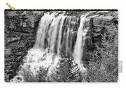 Autumn Blackwater Falls Bw Carry-all Pouch