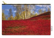 Autumn Birches And Barrens Carry-all Pouch