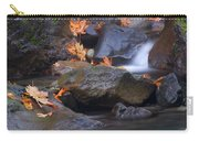 Autumn Cascades Carry-all Pouch