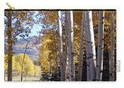 Autumn Chama New Mexico Carry-all Pouch