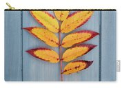 Autumn Colours On Blue Carry-all Pouch
