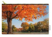Autumn Dawn Carry-all Pouch
