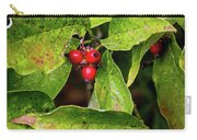 Autumn Dogwood Berries Carry-all Pouch