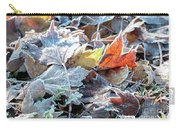 Autumn Ends, Winter Begins 3 Carry-all Pouch