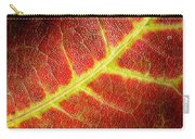 Autumn Fall Colours 2 Carry-all Pouch