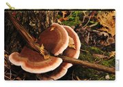 Autumn Fungi Carry-all Pouch