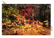 Autumn Hues Carry-all Pouch