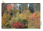 Autumn In Baden Baden Carry-all Pouch
