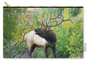 Autumn In Estes Park Carry-all Pouch
