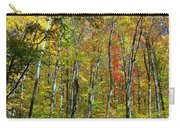 Autumn In Schooley's Mountain Park 2 Carry-all Pouch