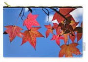 Autumn In The Sky Carry-all Pouch
