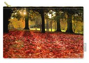 Autumn In Woodthorpe Carry-all Pouch