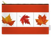 Autumn Leaves Triptych Carry-all Pouch