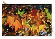 Autumn Leaves2 Carry-all Pouch
