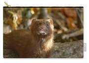Autumn Mink Carry-all Pouch