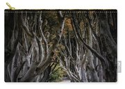 Autumn Morning At Dark Hedges Alley  Carry-all Pouch