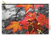 Autumn On Black And White Carry-all Pouch
