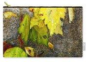 Autumn Rainbow Carry-all Pouch
