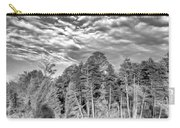 Autumn Reflection 2 Bw Carry-all Pouch