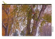 Autumn Snow Park Bench   Carry-all Pouch
