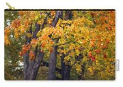 Autumn Trees In Park Carry-all Pouch