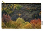 Autumn Valley Carry-all Pouch