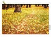 Autumn Walk In Spokane Carry-all Pouch