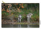 Autumn Wolf Study  Carry-all Pouch
