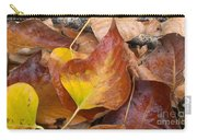 Autumns Color Palette Carry-all Pouch