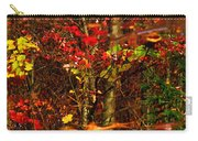 Autumns Looking Glass 2 Carry-all Pouch