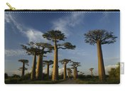 Avenue Des Baobabs Carry-all Pouch