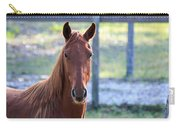 Babcock Wilderness Ranch - Red Horse Portait Carry-all Pouch