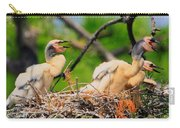 Baby Anhinga Chicks Carry-all Pouch