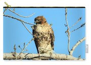 Baby Bald Eagle Carry-all Pouch