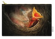 Baby Bird In The Nest With Mouth Open Carry-all Pouch