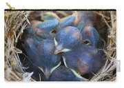 Baby Bluebirds Carry-all Pouch