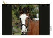 Baby Draft Horse Carry-all Pouch