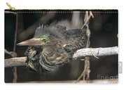 Baby Green Heron Resting On A Branch Carry-all Pouch